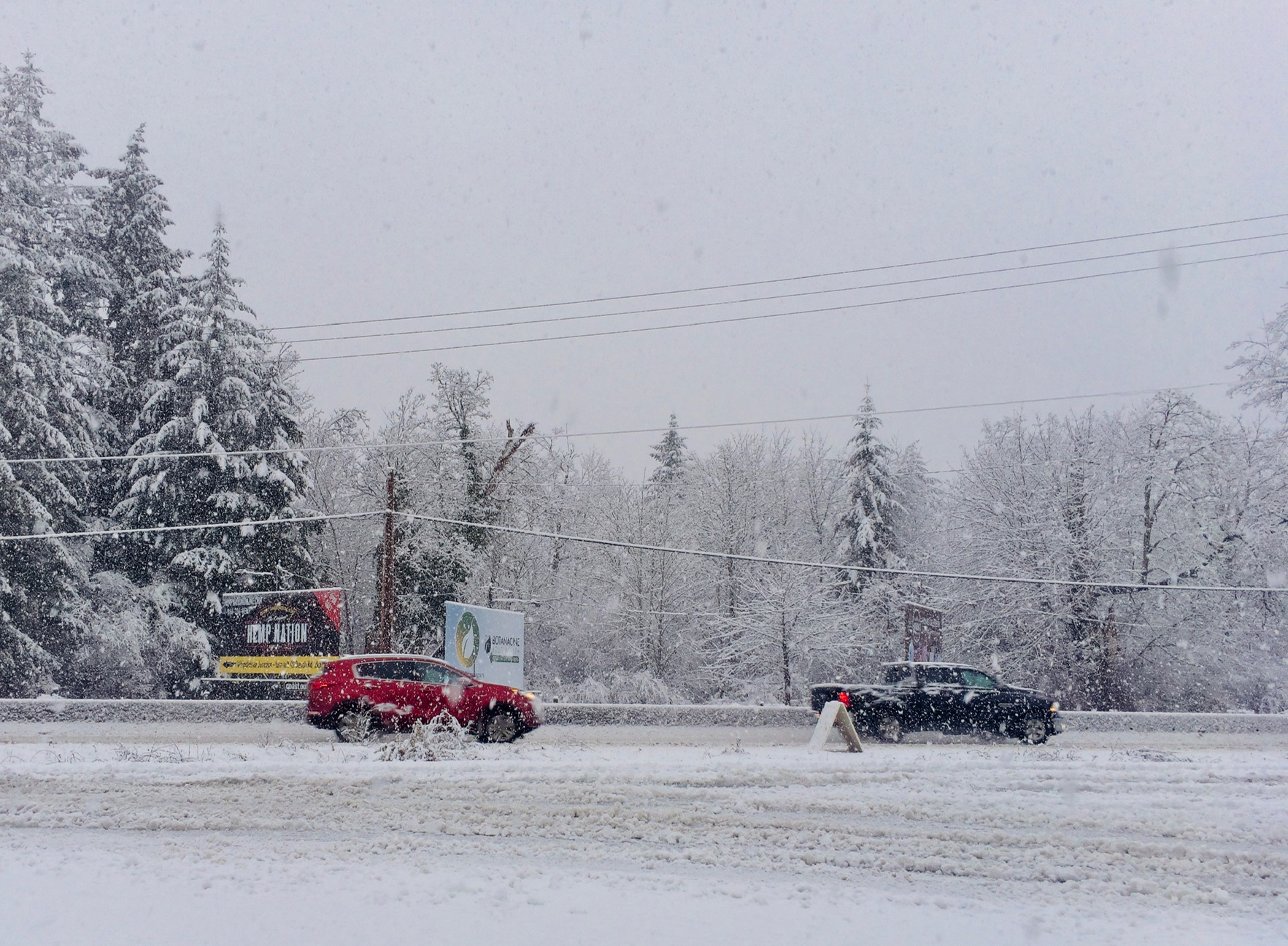 Winter storm warning for Metro Vancouver